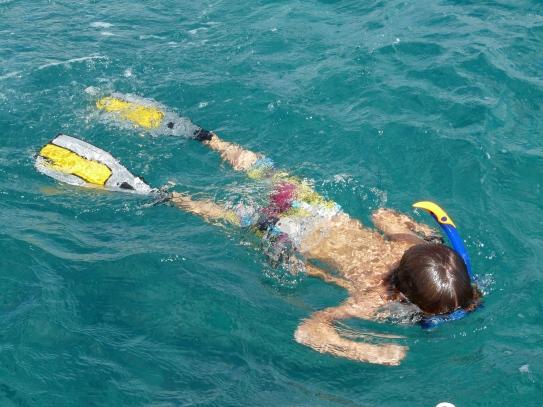 Théo fait son CNED : natation !!!