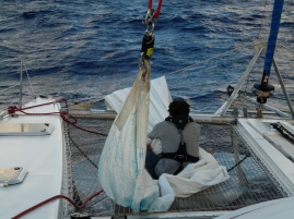 C'est notre plus gros poisson ramené à bord !
