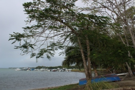 Baie Mahault.