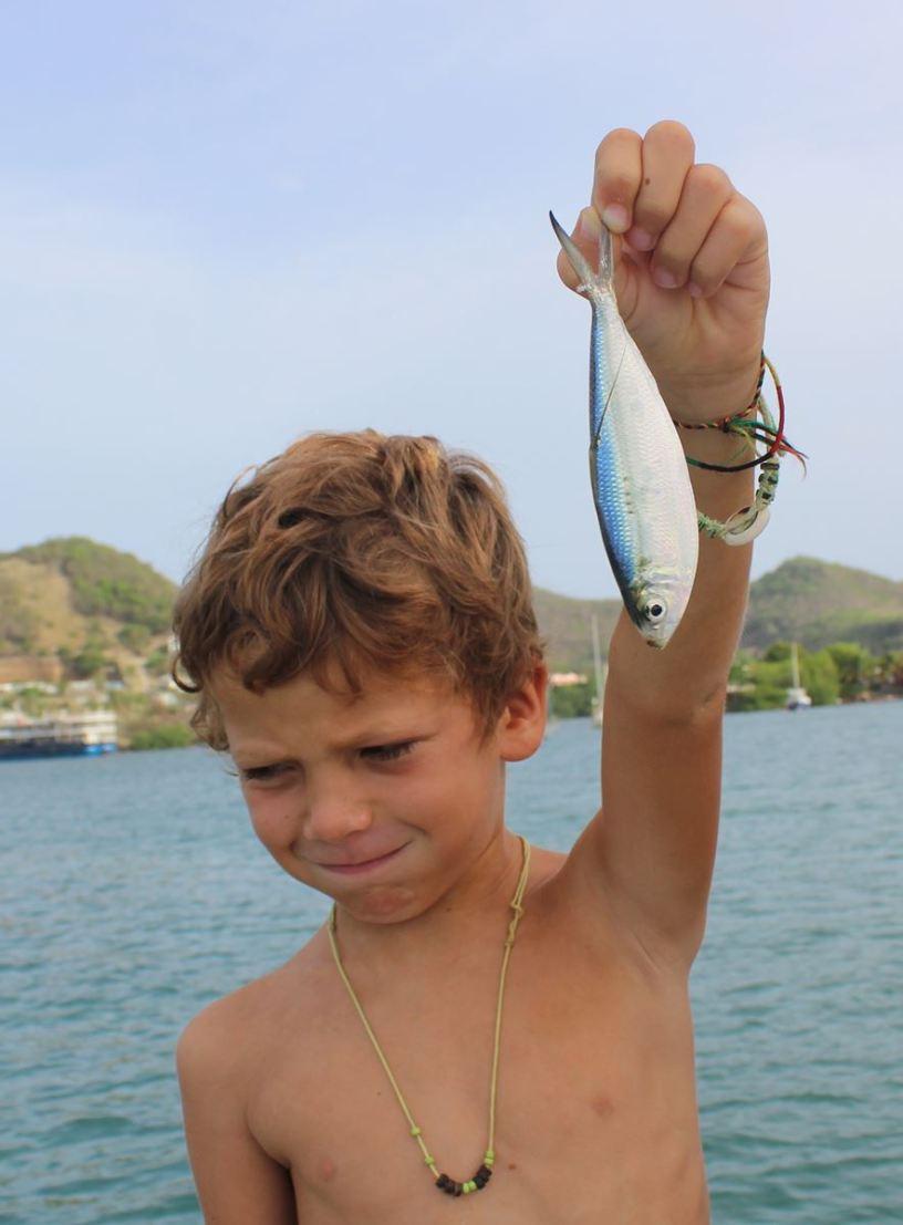 Le dernier poisson de la saison... on l'a trouvé mort sur la jupe !