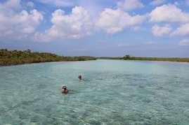 Deux courageux qui se baignent dans la mangrove :-)