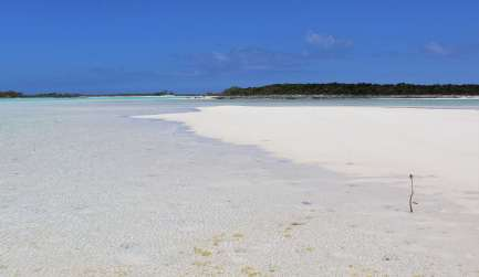Jimmys Cay