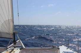 Devant nous un voilier : MIGALOO