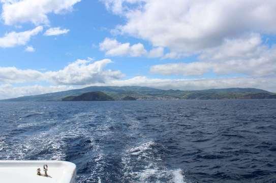 Derrière nous, l'île de Faial.